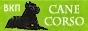 Официальный сайт Всеукраинского клуба породы CANE CORSO.